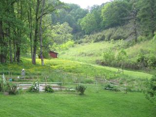 Tender Mercy Retreat - Waynesville vacation rentals