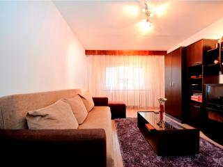 Nice apart. for 2-4 guests - Brasov - Moieciu vacation rentals