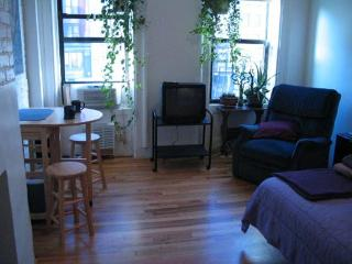 Private Studio in Historic Greenwich Village Loft - New York City vacation rentals