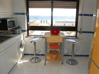 Nice apartment in Setúbal with sea view - Setubal District vacation rentals