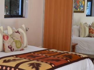 22 Die Laan Studio - Stellenbosch vacation rentals