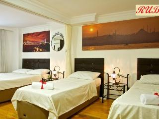 A Ruby on the best street of Cihangir - Istanbul vacation rentals