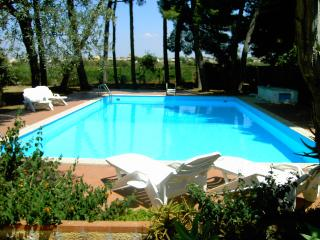 Villa in the park with pool - Marsala vacation rentals