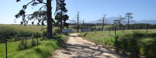 Jonquq Farm Cottages: Rus - Image 1 - South Africa - rentals