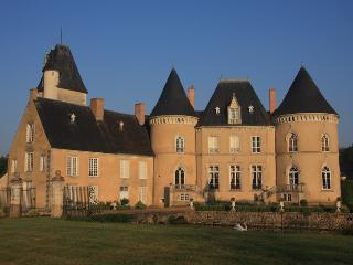 Chateau de Vauloge, b&b in a castle - Brulon vacation rentals