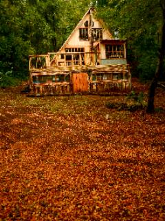 A dream on the heart of the woods. - Image 1 - Curico - rentals