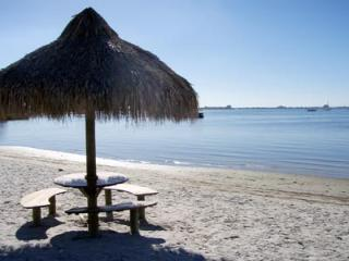 Beach Life - picture post card views & sunsets! - Saint Petersburg vacation rentals