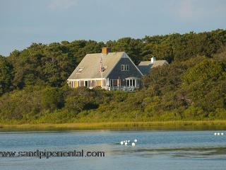 #484 Chappaquiddick waterfront property on Caleb's Pond - Chappaquiddick vacation rentals