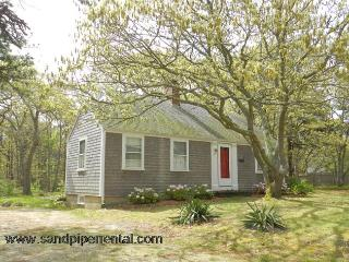 #707 Delightfully decorated & a short distance to Sengy Pond - Edgartown vacation rentals
