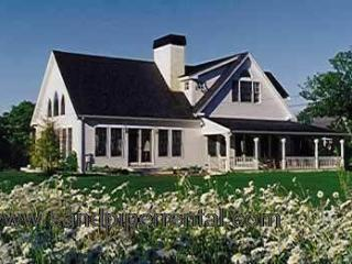 #1108 An incredible Island estate on Martha's Vineyard - West Tisbury vacation rentals