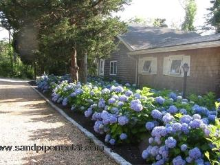 #8123 On Lagoon Pond with Mooring - Oak Bluffs vacation rentals