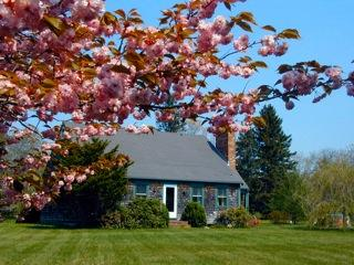 #100019 a full acre with plenty of space to play & explore - Image 1 - West Tisbury - rentals