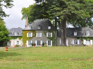 French mansion in Creuse, Heart of France, pool, 12p - Masbaraud-Merignat vacation rentals