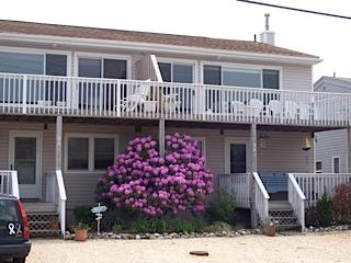 duplex condo right half - Long Beach Island bay view - Harvey Cedars - rentals