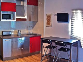 NEWLY RENOVATED IN DOWNTOWN; QUIET AND VERY SAFE - Madrid vacation rentals
