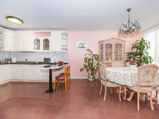 Apartment Car in Split - Split vacation rentals