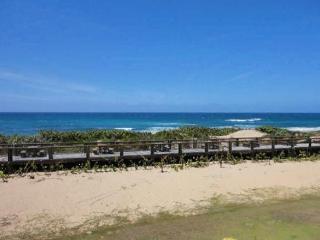 Isabela Haudimar Jobos Ocean Front Condo 1st Floor - Isabela vacation rentals
