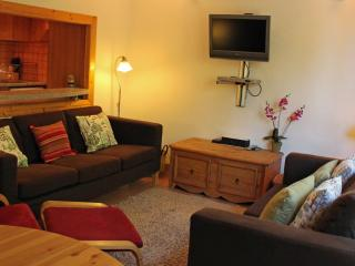 Francotel - Haute-Savoie vacation rentals