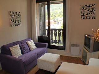 Forclaz 4b - Haute-Savoie vacation rentals