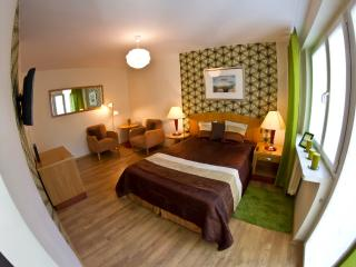 Apartament Piastowski Wroclaw - Western Poland vacation rentals