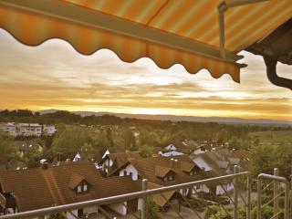 4-Star Apartment with Black Forest & Alsace View - Sulzburg vacation rentals