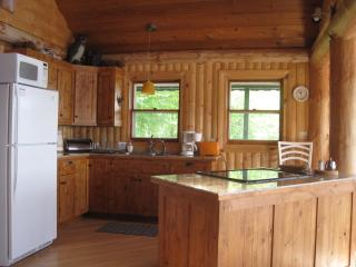 THE   LAKEHAUS - Hurley vacation rentals