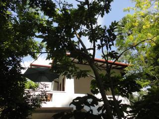 Tropical Trees-Galle/Unawatuna - Colombo vacation rentals