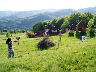 Rakhiv Plai - Zakarpattia Oblast vacation rentals
