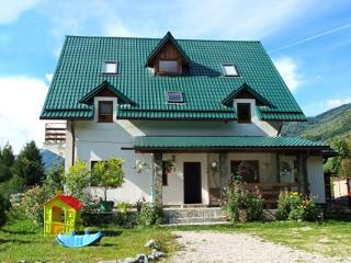 Villa Sucu Poiana Marului - Transylvania vacation rentals