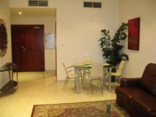 Beautiful 1-bedroom Apartment on 33rd floor - Dubai vacation rentals