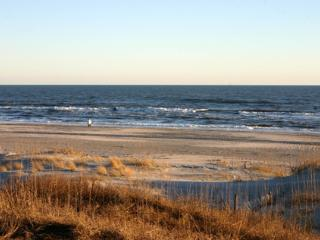 Beautiful Oceanfront Beach House - Atlantic Beach vacation rentals