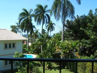 Bright and Airy Studio Apartment - Sosua vacation rentals