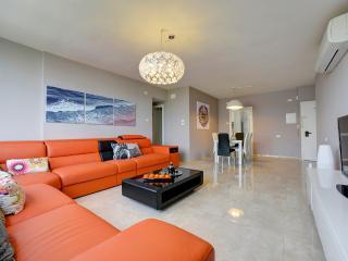 Ultra Luxury PH /Dizingof / * Beach - Tel Aviv vacation rentals