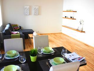 Great apartment in down town Reykjavik, sleeps 4 - Reykjavik vacation rentals