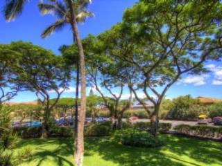 Maui Vista 2220 W34730646-01 - Kihei vacation rentals