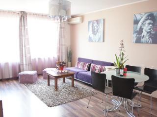 Fancy 60's, city downtown apartment - Bucharest vacation rentals
