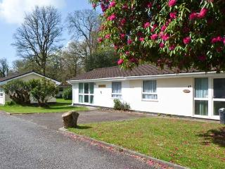 TRANQUILLITY, on-site fishing, ground floor accommodation, near Liskeard, Ref. 21135 - Liskeard vacation rentals
