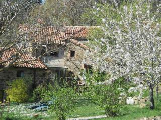 Lucashouse  Fontepetra - Seggiano vacation rentals