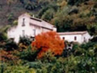 B&B in farm house in Sicily - Sant'Angelo di Brolo vacation rentals