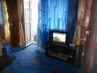 1 Bedroom Apartment - Zaporizhzhya vacation rentals
