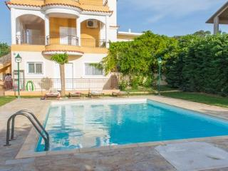 Villa Anavyssos swimming pool and garden - Anavyssos vacation rentals
