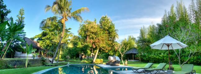 Pool garden - Villa Alir - Canggu - Bali - Canggu - rentals