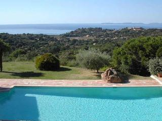 Villa with Ocean Views, Pool, Surrounded by Lavender and Olive Tree Garden - Le Plan-du-Var vacation rentals