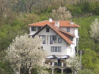 Villa Lorena - Zagreb vacation rentals