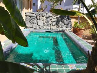 Casa Bonita - San Jose Del Cabo vacation rentals