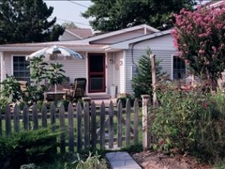 519 Pearl Avenue 95147 - Image 1 - Cape May Point - rentals
