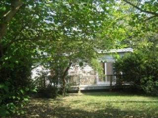 509 Holly Avenue 92946 - Cape May Point vacation rentals