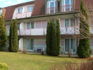 Comfortable apartment close to the Villach SPA - Carinthia vacation rentals