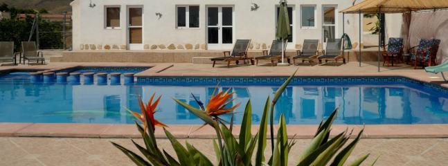 Pool & pool-house - Finca Limonero - Mazarron - rentals