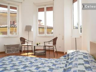Colosseo  bright, trendy  fabolous flat. - Rome vacation rentals